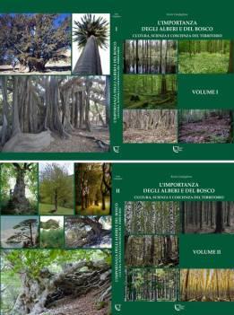 L'importanza degli alberi e del bosco
