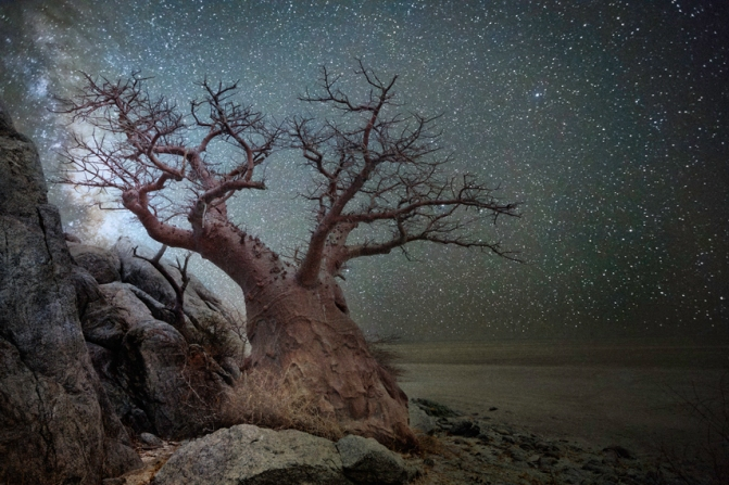 "photo: ""Lyra"" by Beth Moon"