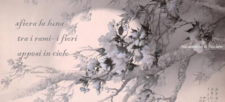 Luna e fiori