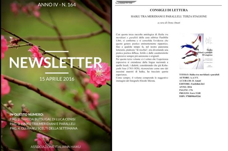 news letter copertina haiku
