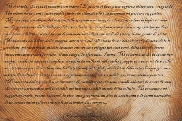 albero-grano-anelli-anulari-legno-anello-anno-annuale_121-73363