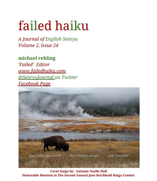 copertina failed haiku dic 2017
