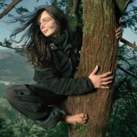 La ragazza sull'albero (Julia Butterfly Hill)