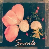 Snails - Lumachine